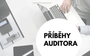 Příběhy auditora